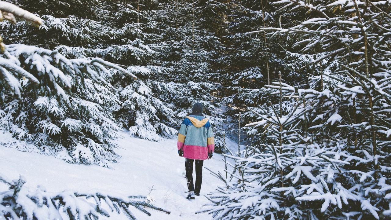 filous — Let It Snow (Visualizer)