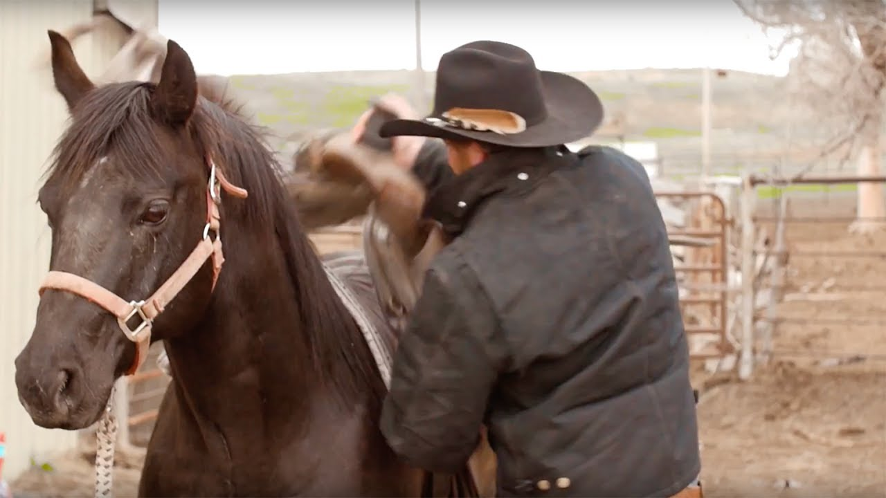 Rodeo Cold Beer — Official Video