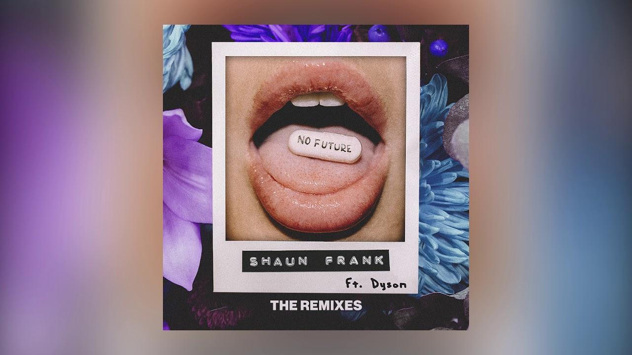 Shaun Frank — No Future feat. DYSON (Boxinlion Remix) [Cover Art] [Ultra Music]