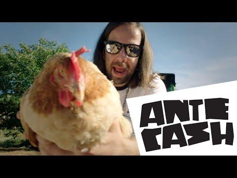 ANTE CASH — ANTE (OFFICIAL VIDEO 2017)